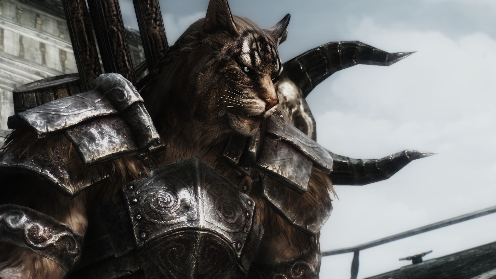 Best Heavy Armor Skyrim Build